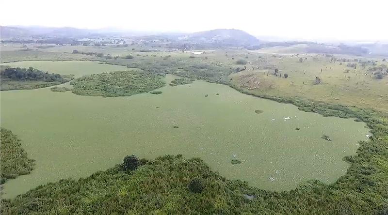 Pantanal Iguaçuano