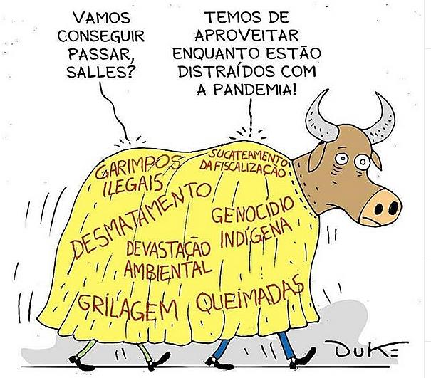 Campanha cobra posição de empresas que estariam apoiando o ministro Ricardo Salles